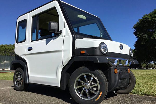 Evolution Revolution Golf Cart