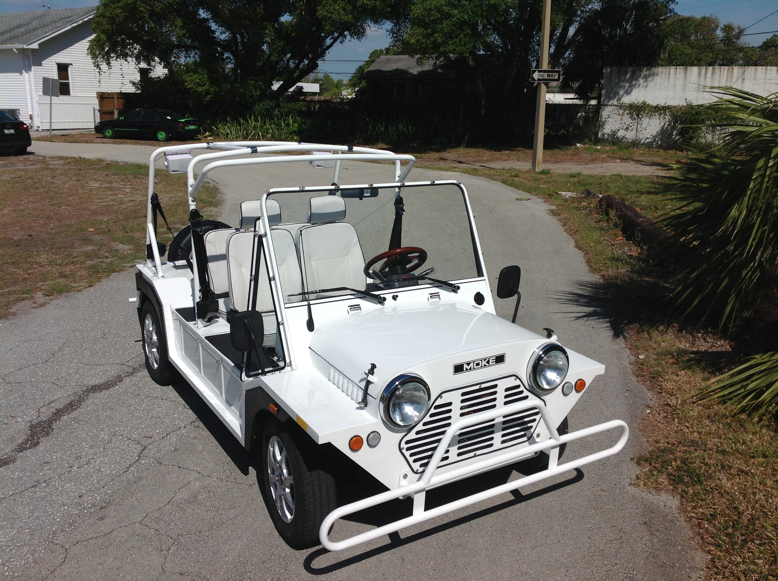 Moke Golf Cart Car Mini